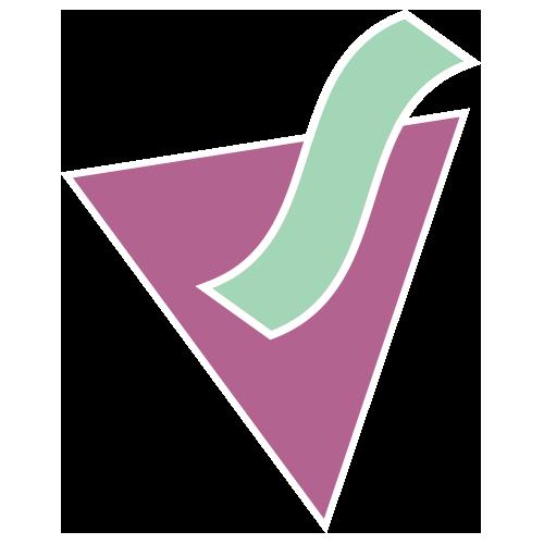 ViaEtere Logo